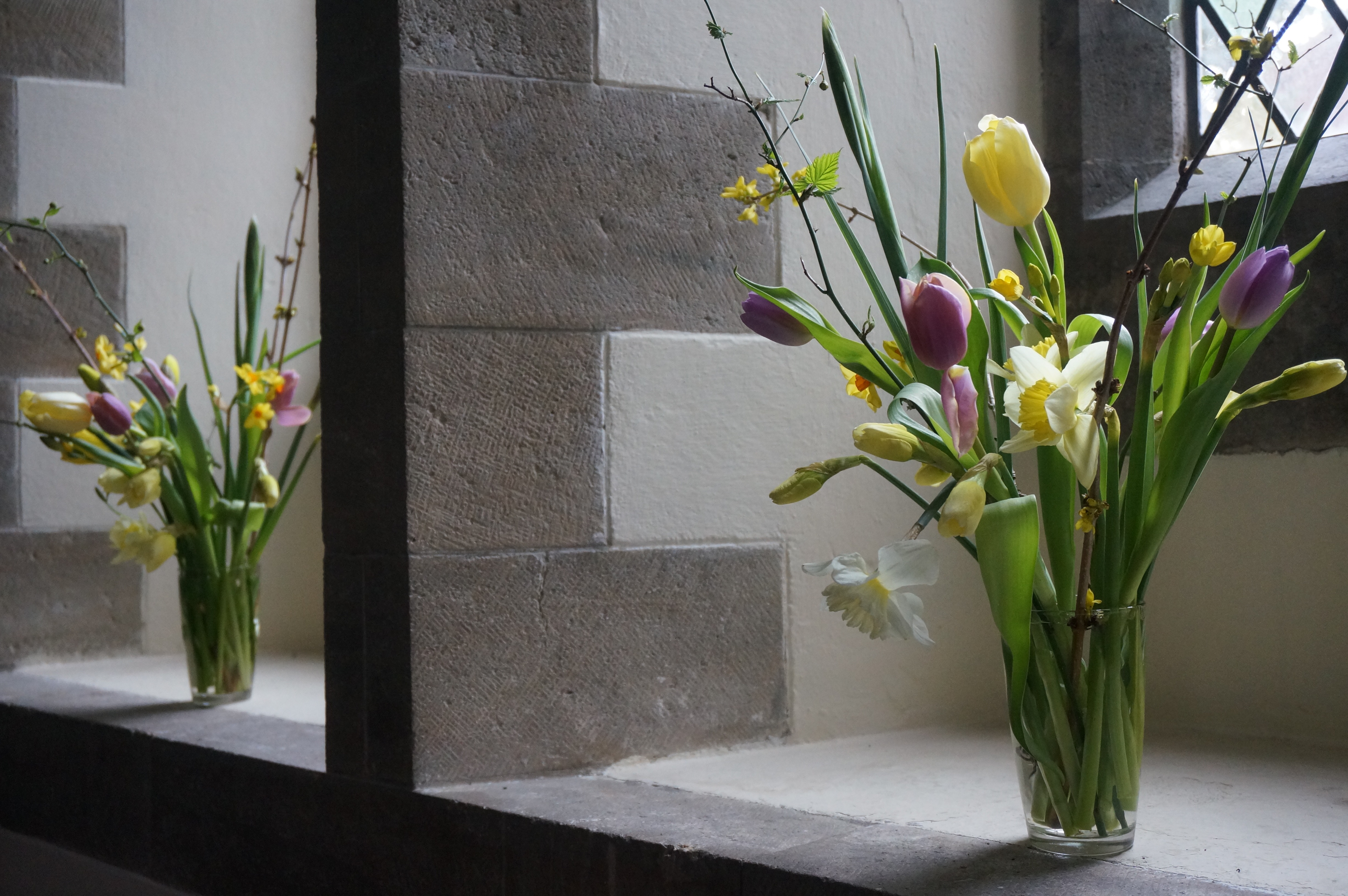Normally a day for church decoration - things will be different this year - but the flowers still bloom this Spring!